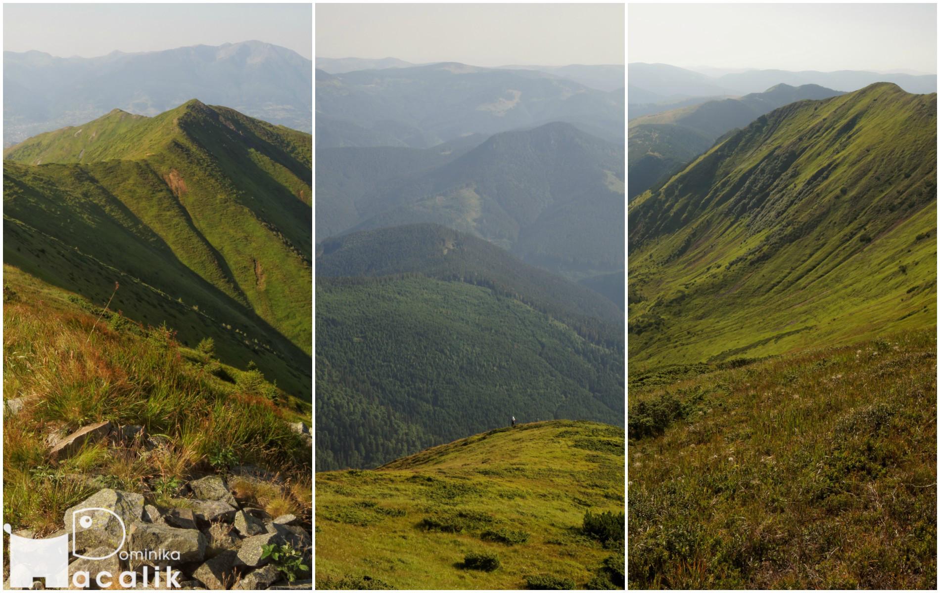 Zdjęcie ze szczytu, w tle pasma wzgórz Maramureszu